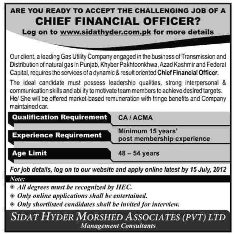 Chief Financial Officer Cfo Job Under Oil And Gas Sector In
