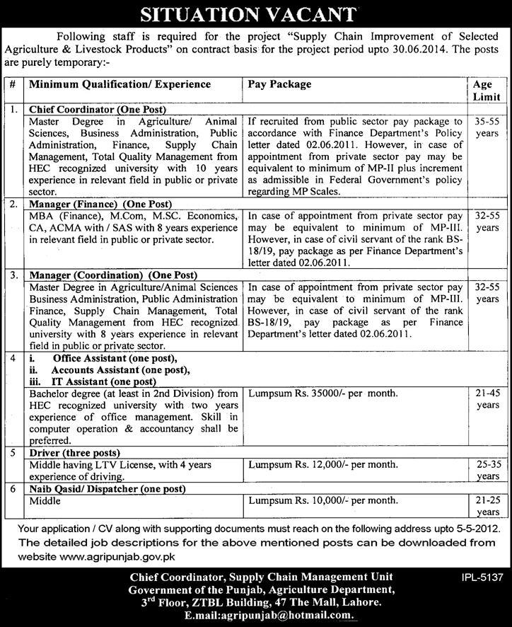 Supply Chain Management Unit Governmnent Of The Punjab Jobs In
