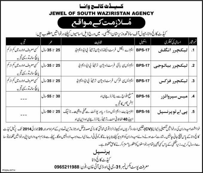 Cadet College Wana Jobs 2014 July for Lecturers, Mess Supervisor & Personal Assistant