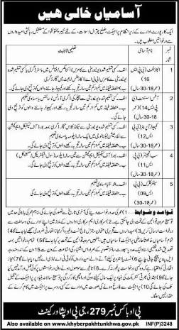 PO Box 279 GPO Peshawar Jobs 2014 August in Public Sector Corporate Organization
