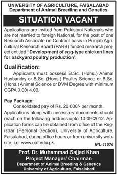 University of Agriculture Faisalabad Requires Research Associate Under PARB Project (Government Job)