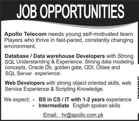 Database / Data Warehouse Developer & Web Developer Jobs in Pakistan ...